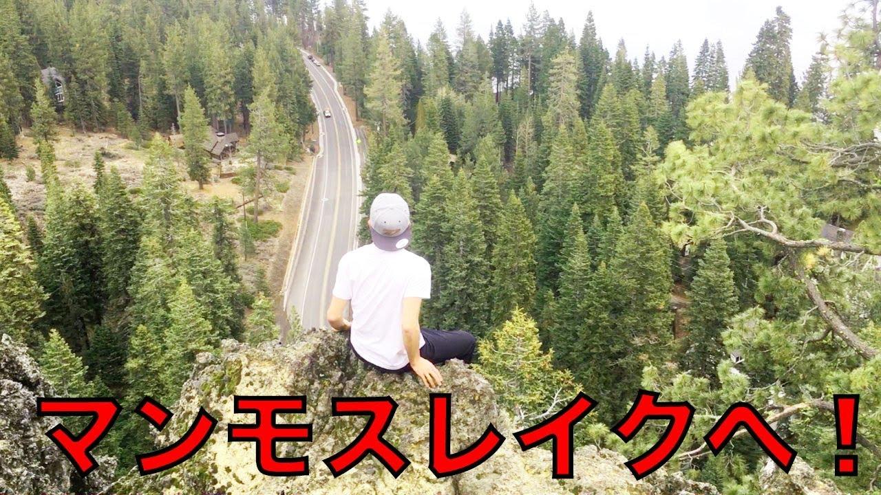 フリースキー選手の大会中の移動って!? スキー海外遠征Vlog!!